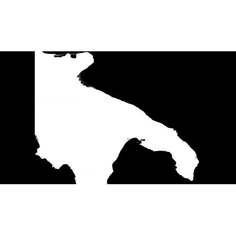DSM Puglia - Modello digitale del terreno