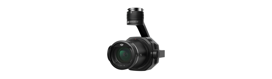 Gimbal DJI per drone - Rivendita ufficiale DJI